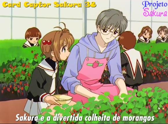 Sakura-38
